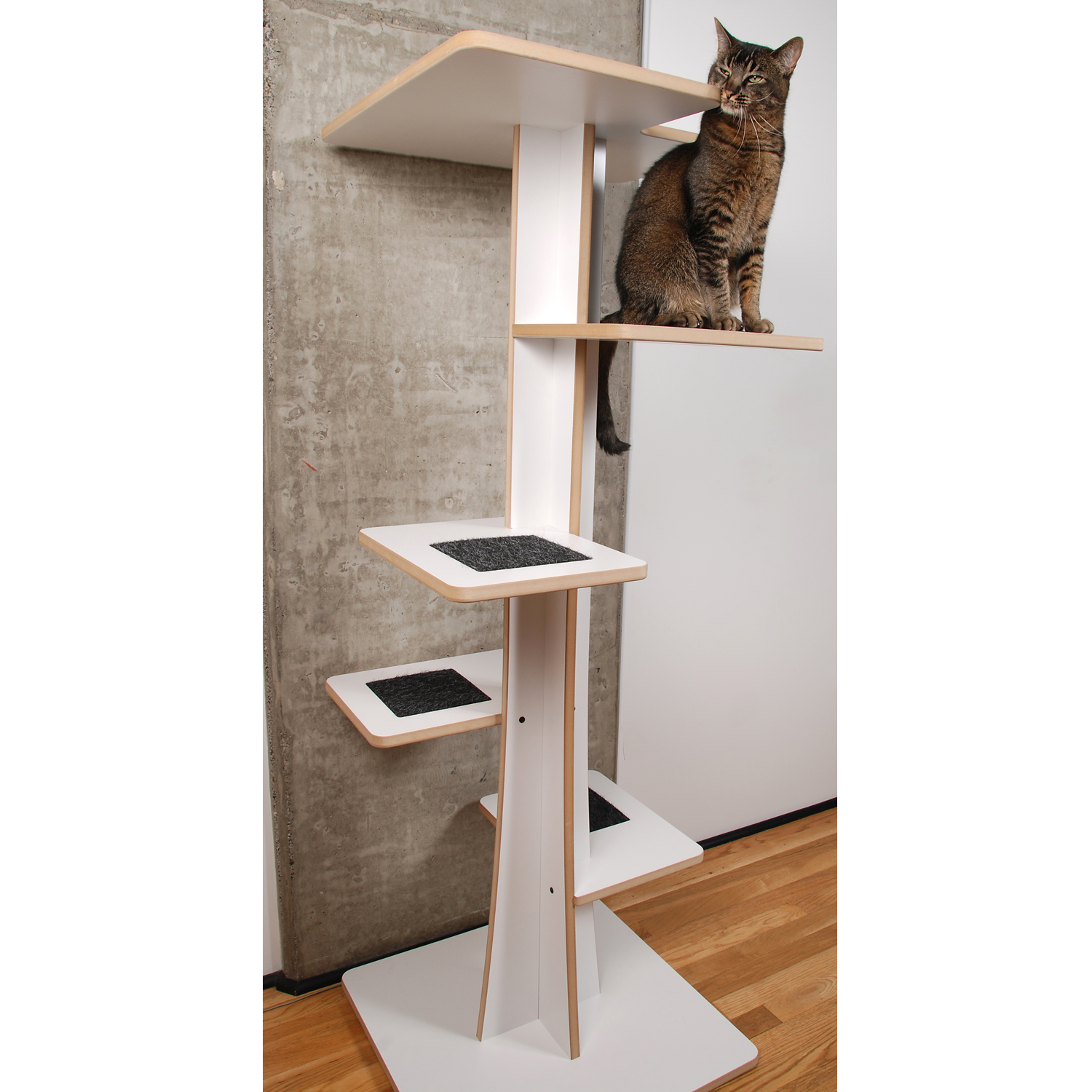 Baobab Modern Cat Tree Square Cat Habitat Interiors Inside Ideas Interiors design about Everything [magnanprojects.com]