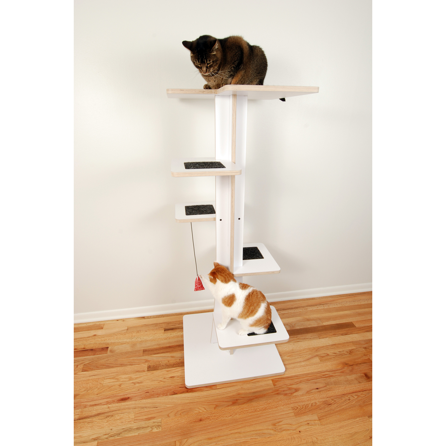 contemporary ideas best litter stylish designer tree creative on modern cat box pet buy house furniture design