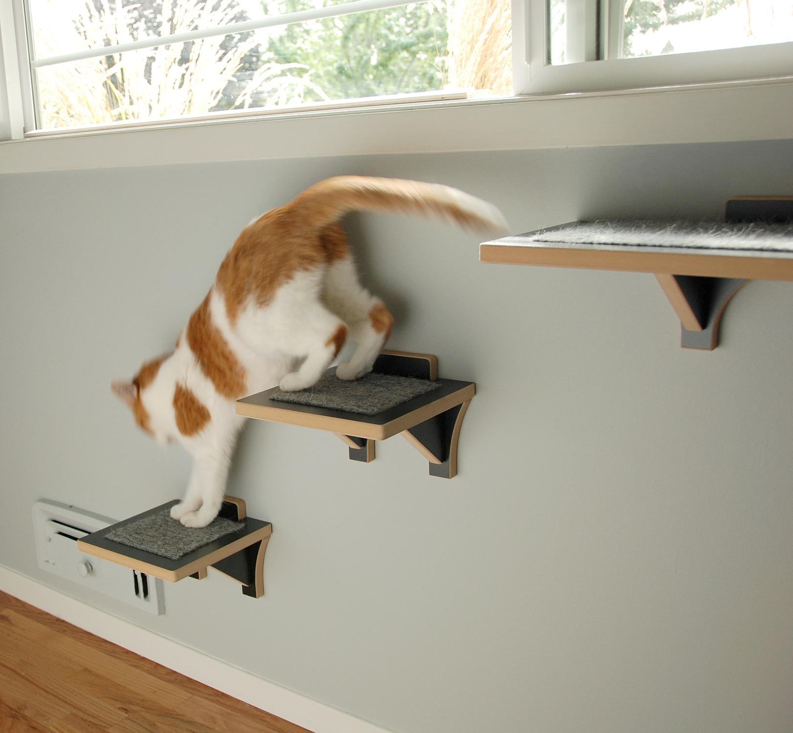 Modern Cat Climbing Shelf